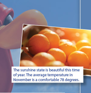 The sunshine state is beautiful this time of year. The average temperature in November is a comfortable 78 degrees.
